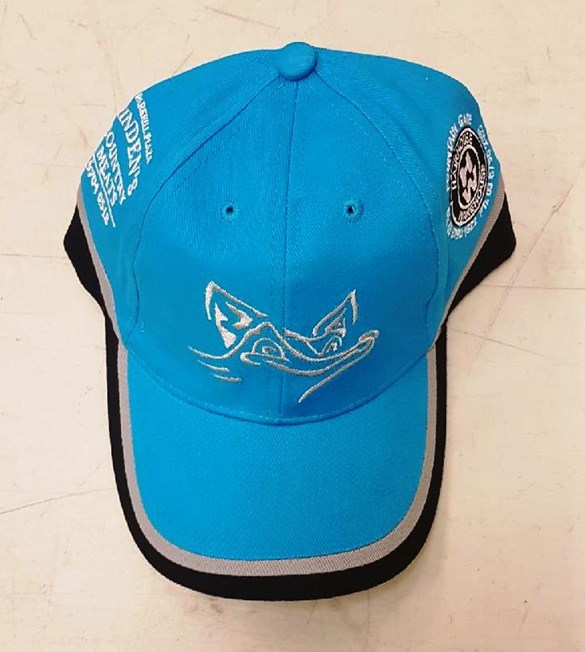 Blue Foxes Hat